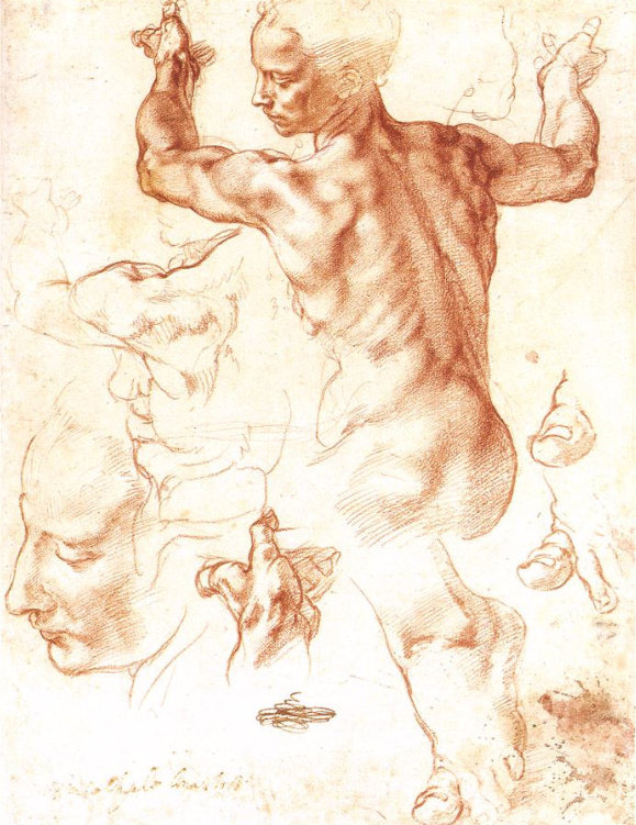A Michelangelo study of the human form