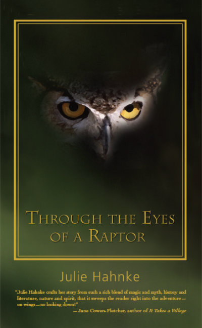 Book cover of Through the Eyes of a Raptor